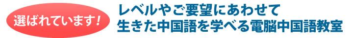 レベルやご要望に合わせて生きた中国語を学べる電脳中国語教室